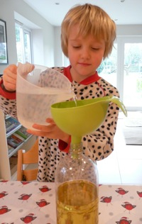 pouring water onto oil - homeschool science
