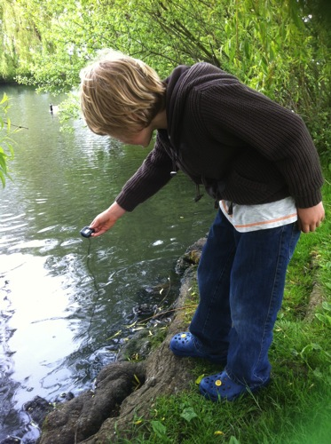 measuring pond temperature