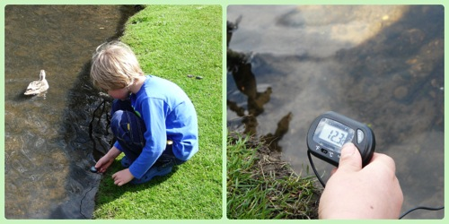 Testing pond temperature