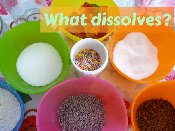 elementary homeschool science what dissolves