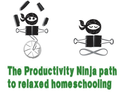 Productivity ninjaa